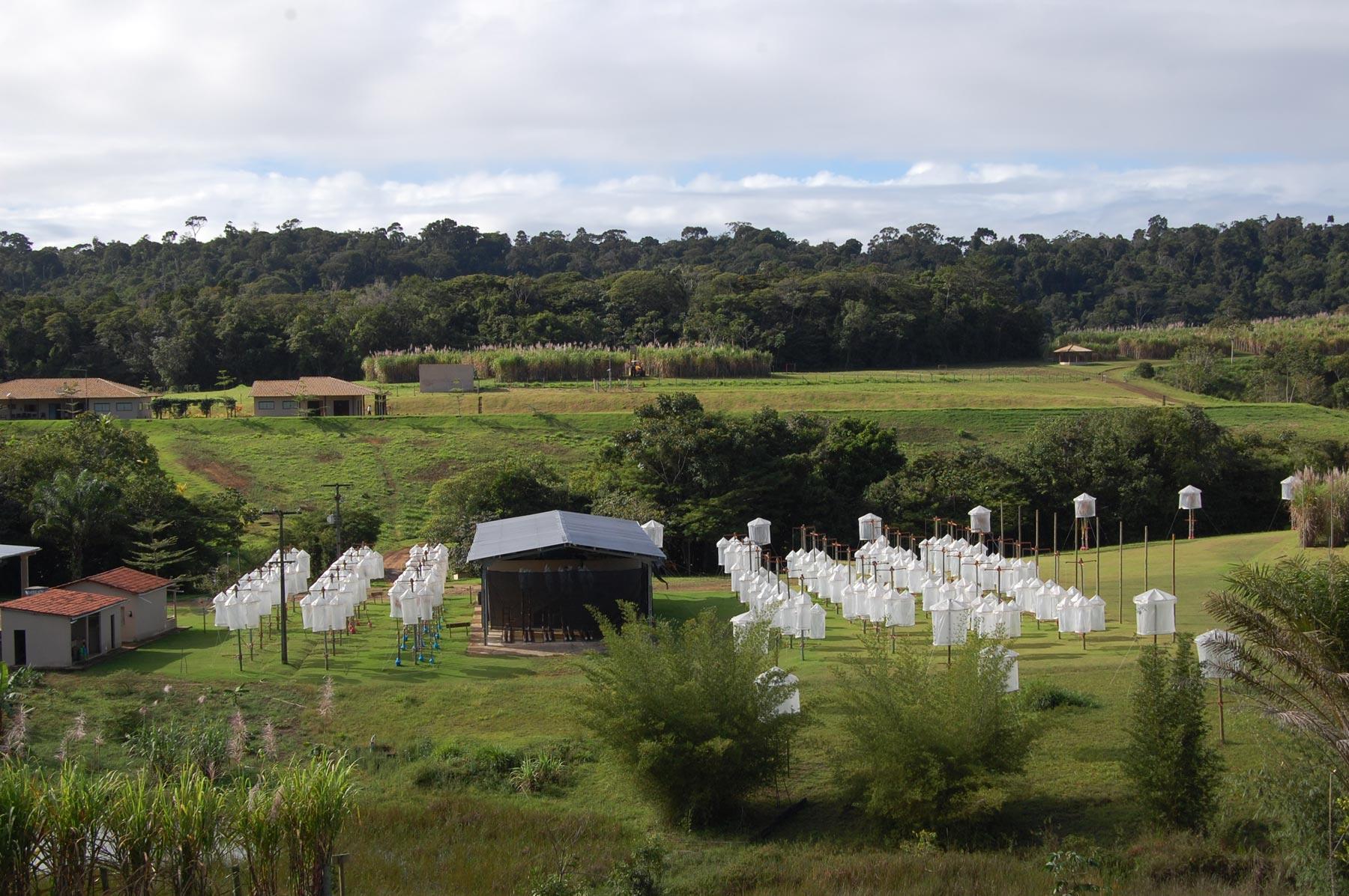 Figura 2. Vista panorâmica da Estação de Hibridação de Cana em Serra Grande (Uruçuca BA).