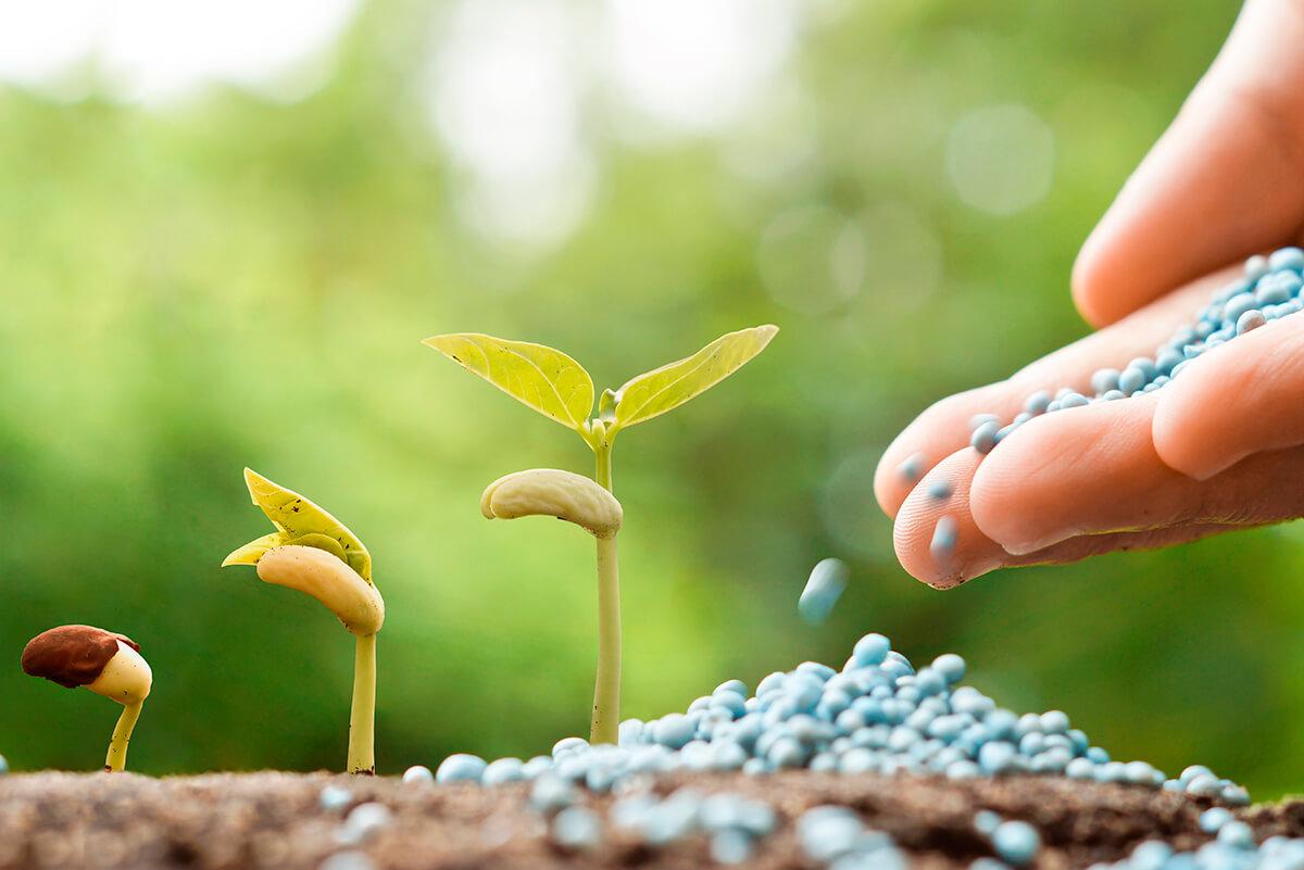 Laboratório de Fertilizantes e Resíduos (Intituto Agronômico (IAC)